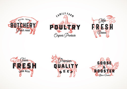 Premium Quality Retro Cattle and Poultry Vector Logo Templates Collection. Hand Drawn Vintage Domestic Animals and Birds Sketches with Classy Typography, Pig, Cow, Chicken, etc. Isolated Labels Set