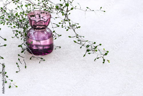 Vintage Purple Glass Vase And Zigzag Plantcorokia Cotoniaster On