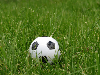 Soccer ball on the green grass. World cup 2018, football championship