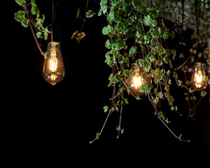 light bulb leaves cafe interior retro garland colored black background new design green lantern fresh modern style