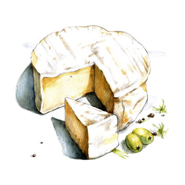Camembert watercolor illustration on white background
