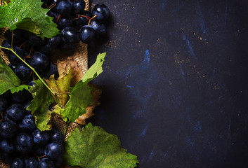 Blue wine grapes with vine and leaves, black background, top view Fototapete