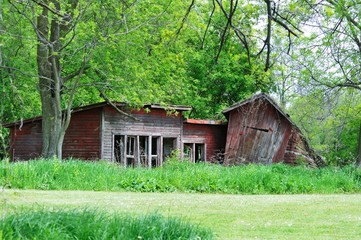 Abandoned Chicken House
