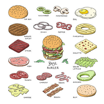 Burger vector fast food hamburger or cheeseburger constructor with ingredients meat bun tomato and cheese illustration fastdood sandwich or beefburger set isolated on white background