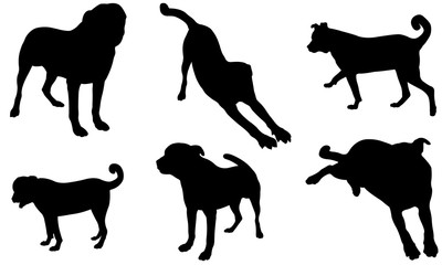 Set of different dog silhouettes isolated on white