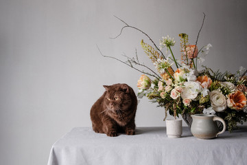 british shorthair cat sitting on table next to flowers and coffee cup