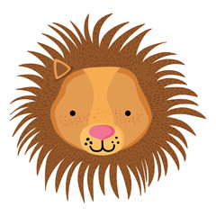 cute male lion head wild animal