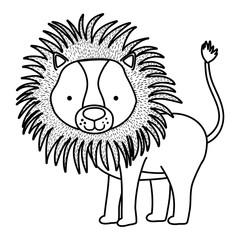 line cute male lion wild animal