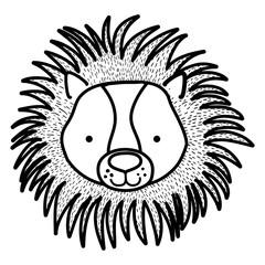 line cute male lion head wild animal