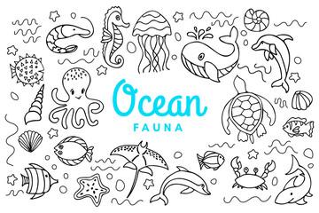 sea ocean fauna