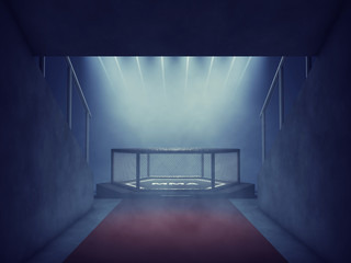 Fotorollo Kampfsport MMA cage lit by spotlights, Mixed martial arts arena entrance