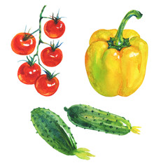 Watercolor set of fresh vegetables on white background. Hand drawn yellow paprika pepper, cucumbers, cherry tomatoes
