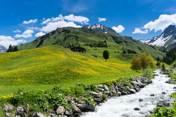 Wall Mural - beautiful mountain valley near Klosters on a summer day with a small creek running through it