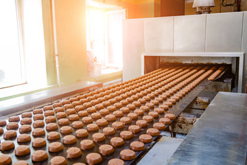 Baking production line. Raw uncooked cookies going to oven by conveyor