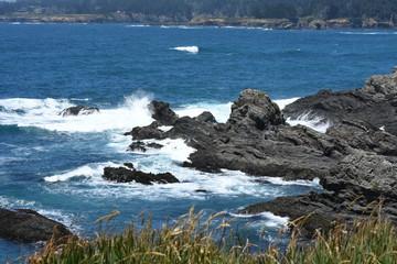 northern California Mendocino county pacific coast