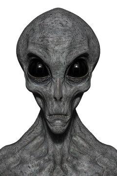 grey alien exploring arround