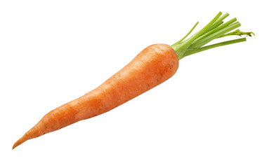 Fresh carrot isolated on white background. Clipping path