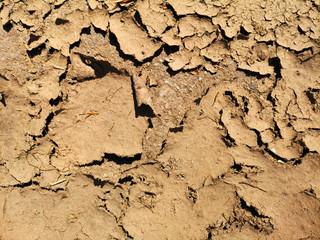 ausgetrockneter Boden - global warming
