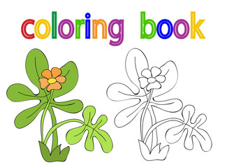 vector, isolated coloring book, flowers