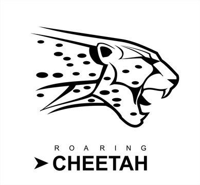 cheetah, roaring cheetah.