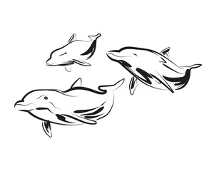 Vector sketch of dolphins