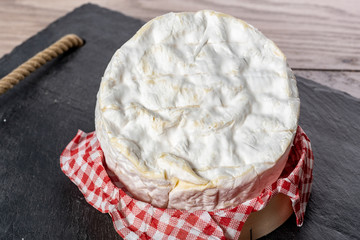 Camembert cheese traditional Normandy French, dairy product