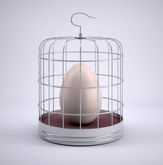 Birdcage with egg inside
