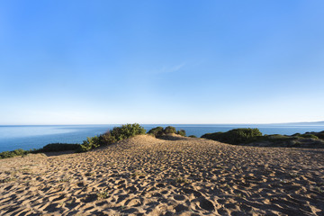 """Sand dunes with myrtle vegetation in front of blue ocean and blue sky - green coast """"Costa Verde"""", Scivu, Sardinia, Italy"""