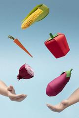 Vegetables Game