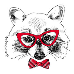 Raccoon portrait in a glasses with red tie. Vector illustration.