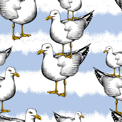 Seamless pattern with image of seagulls one on the other and a blue striped background. Vector illustration.
