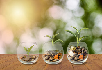 Saving money concept. Coins in glass jar. Investment money concept. Growing Money, finance and investment concept  background. Coins in three glass jar on wooden table with light and nature background