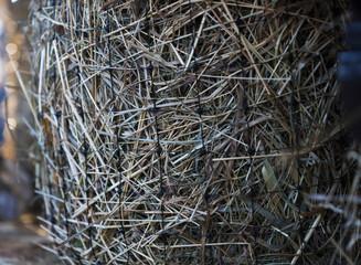 hay in the net