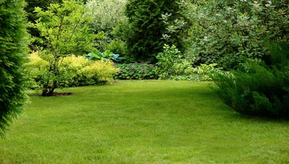 Green lawn surrounded by beautiful plants in a well-kept garden. Fototapete