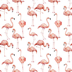 Tuinposter Flamingo Watercolor pink flamingo pattern. Hand painted bright exotic birds isolated on white background. Wild life illustration for design, print, fabric or background.