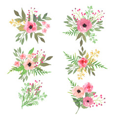 Floral set. Collection with flowers, drawing watercolor. Vector