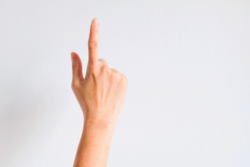 The forefinger that is pointing.