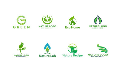 Set of Nature Logo designs concept vector, Bird Logo, Water Drop logo