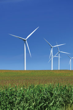 Wind Turbine Over A Green Field