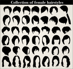 Collection of female haircuts and hairstyles on a white background