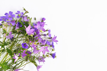 Fototapete - Bouquet of wildflowers of lilac bells isolated on white background, top view.
