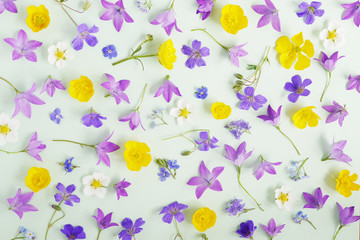 Creative flat layout pattern of wildflowers,  top view.