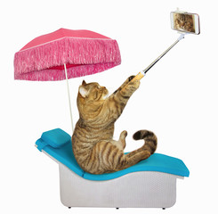 The cat under a pink umbrella takes selfies on a sunbed. White background.