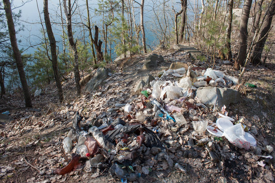 Garbage pollution near the river