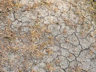 Trockenheit in Deutschland,Klimawandel