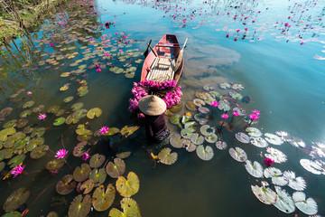 Photo sur Aluminium Mermaid Yen river with rowing boat harvesting waterlily in Ninh Binh, Vietnam