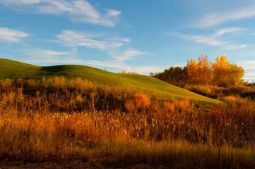 Colorado landscape at sunset