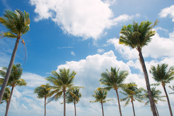 Summer holiday and vacation concept. Inspirational tropical beach.