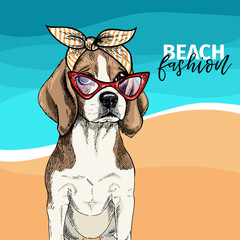 Vector portrait of beagle dog wearing sunglasses, retro bandana. Summer fashion illustration. Vacation, sea, beach, ocean. Hand drawn pet portait. Poster, t-shirt print, holiday, postcard, summertime