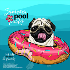 Vector portrait of pug dog swimming in water. Donut float. Summer pool paty illustration. Sea, ocean, beach. Hand drawn pet portait. Poster, t-shirt print, holiday celebration, postcard, summertime.